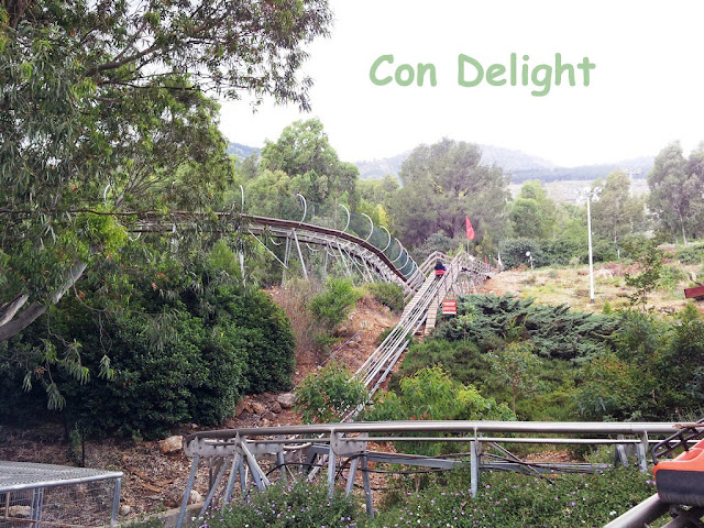 מגלשות הרים מנרה  manara mountain slides