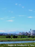 富士山写っているはず