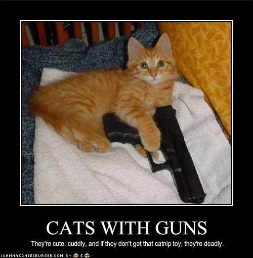 Funny Animals with Guns-2012 Most - 36.3KB