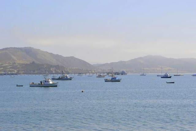 Travel blog california for Avila beach fishing