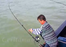 疯狂捞了很大的魟鱼