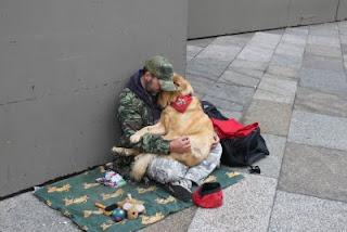 homem e cão em momento de afeição
