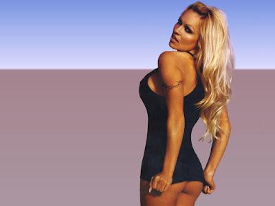 Pamela Anderson Hot Pics