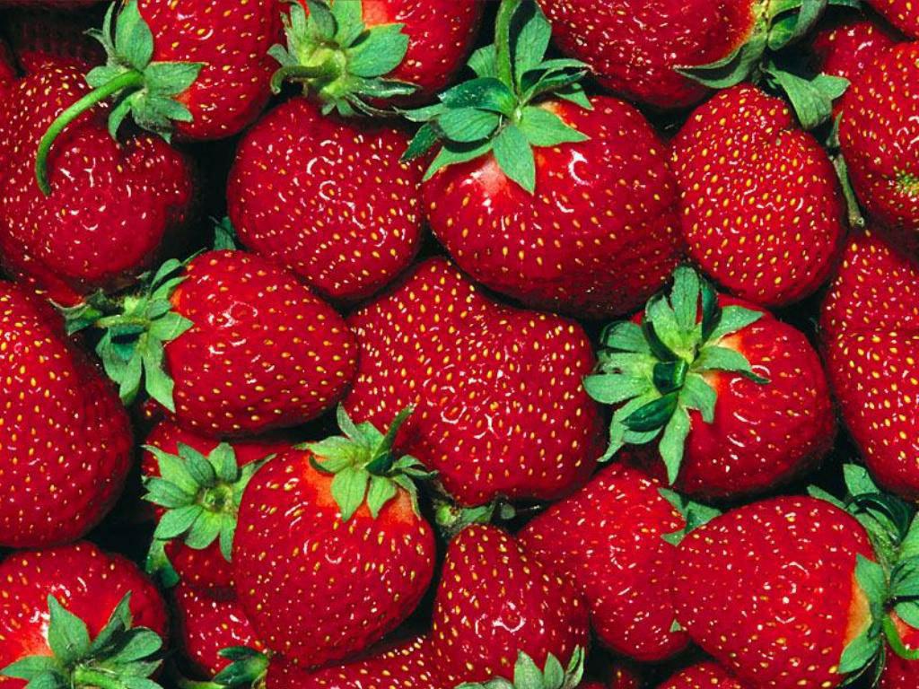 fruit strawberries 4 - photo #3