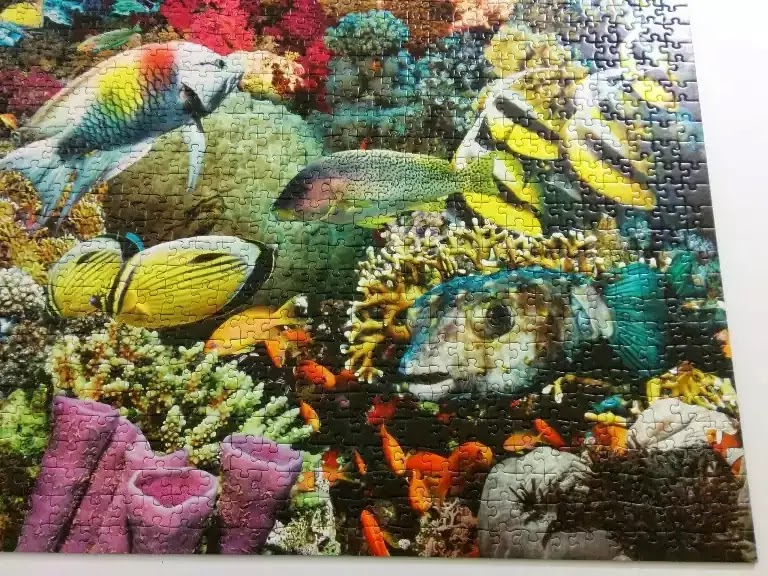 Ravensburger Under the Sea 5000 piece jigsaw puzzle close-up 8
