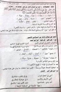 تجميعة شاملة كل امتحانات الصف السادس الابتدائى كل المواد لكل محافظات مصر نصف العام 2016 12540735_958426137544343_6926468003758378968_n