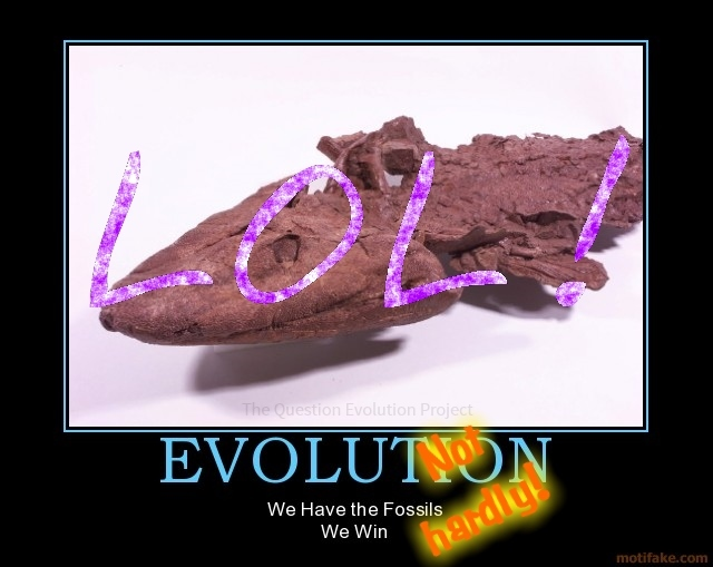 Evolution is not the tidy package displayed in the geologic column and through the dating of artifacts that some people think. In fact, things are going from disorder to disastrous disorder very quickly.