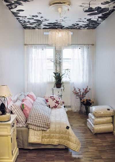 Decoracion de casas peque as decora tu techo for Cual es el techo mas economico para una casa