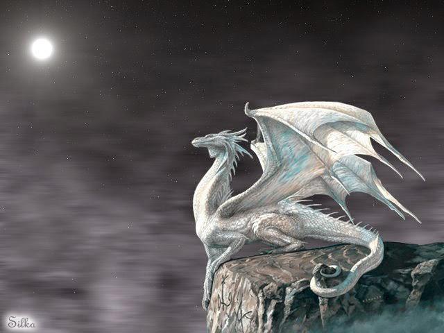 dragones blancos cuidadores de sus tesoros