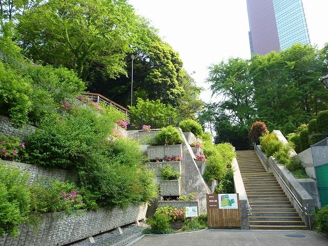 Blog - Deep Azabu: 月の岬<三田...