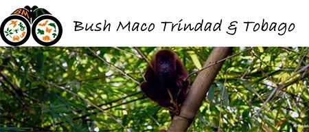 Bush Maco T&T