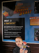 Flat Stanley and the boys were also at the 'Exmoor Beast' exhibit.