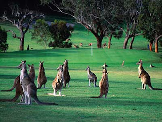 Jalan Jalan Murah Ala Backpacker ke Australia