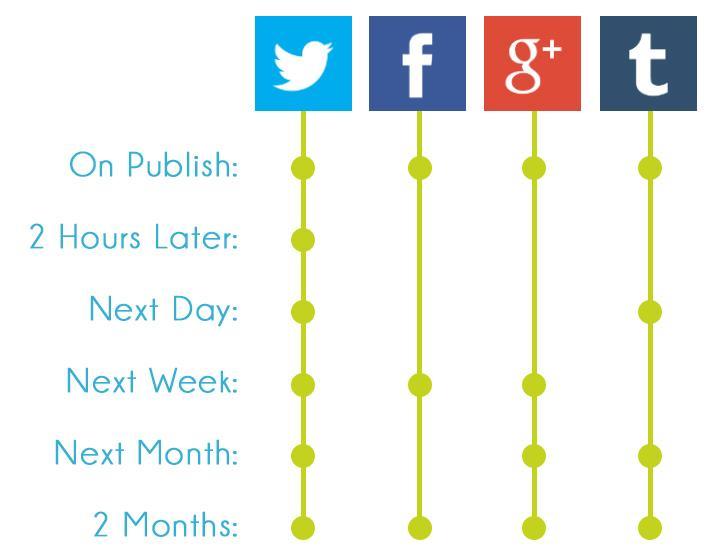 Social Media Platform Timings