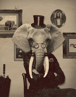 Picture of an elephant in a gentleman outfit.  Enterprises are like elephants, much bigger than this one, thus a lot harder for any person to get a correct whole picture of.
