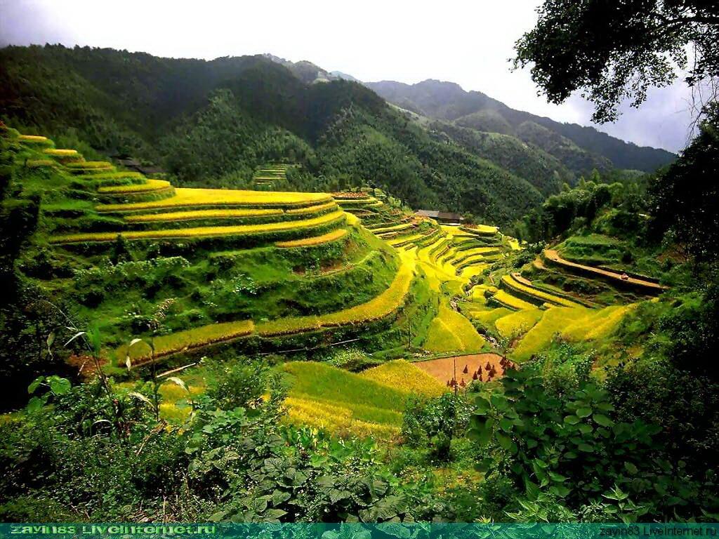 Alam Pegunungan yang ada di Indonesia
