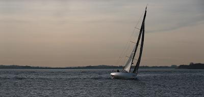 Roaring Forty auf der Elbe