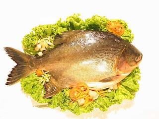 على عكس الشائع..السمك مهم علي مائدة رمضان Eat-fish