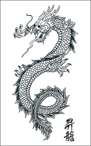 Tattoos dragon tattoo stencils 4 - Dragon japonais dessin ...