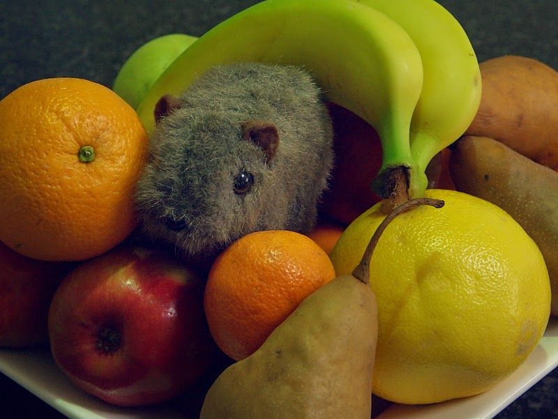 Shane Wombat with  fruit