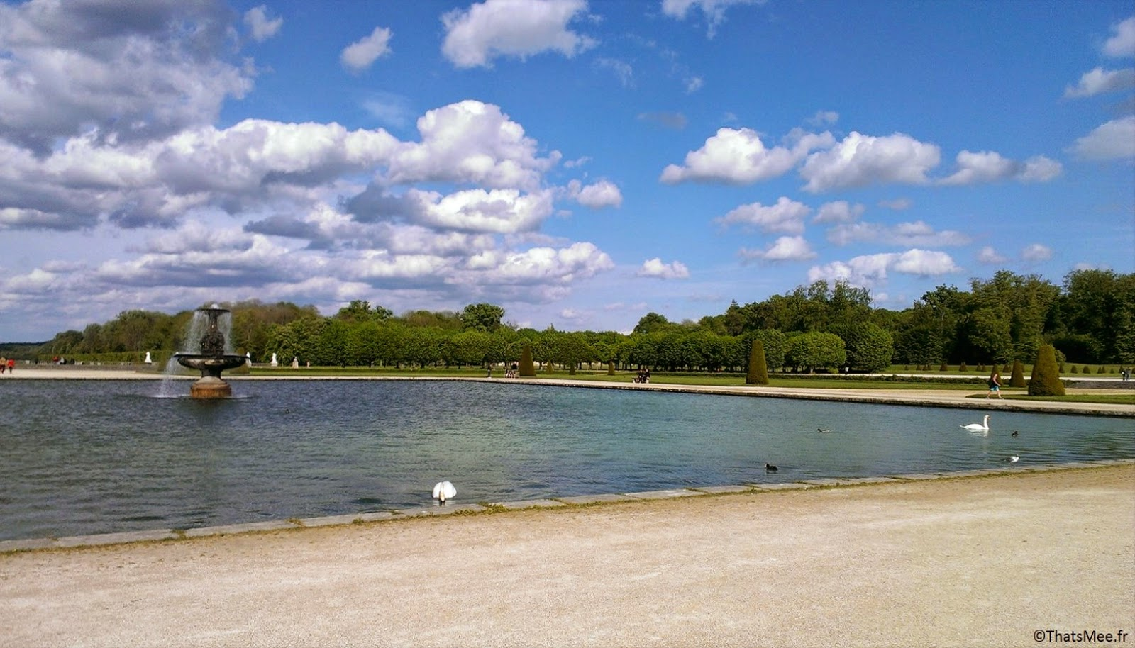 tarpons lac Chateau Fontainebleau carpes poissons