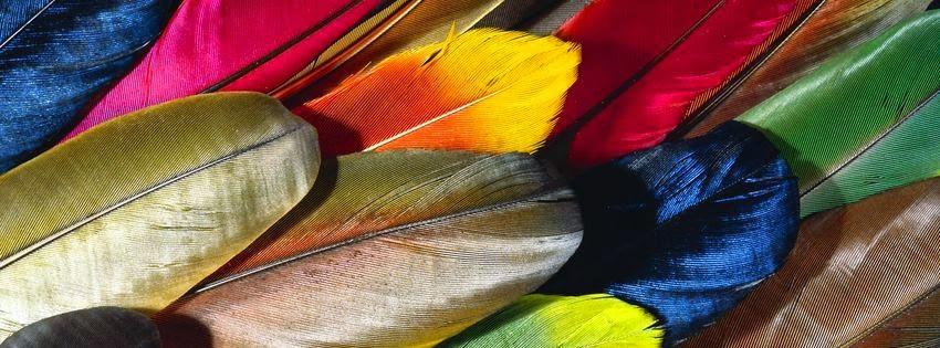 Magnifique couverture facebook plume coloré
