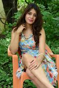 New actress Aarti Chhikara glam pics-thumbnail-19