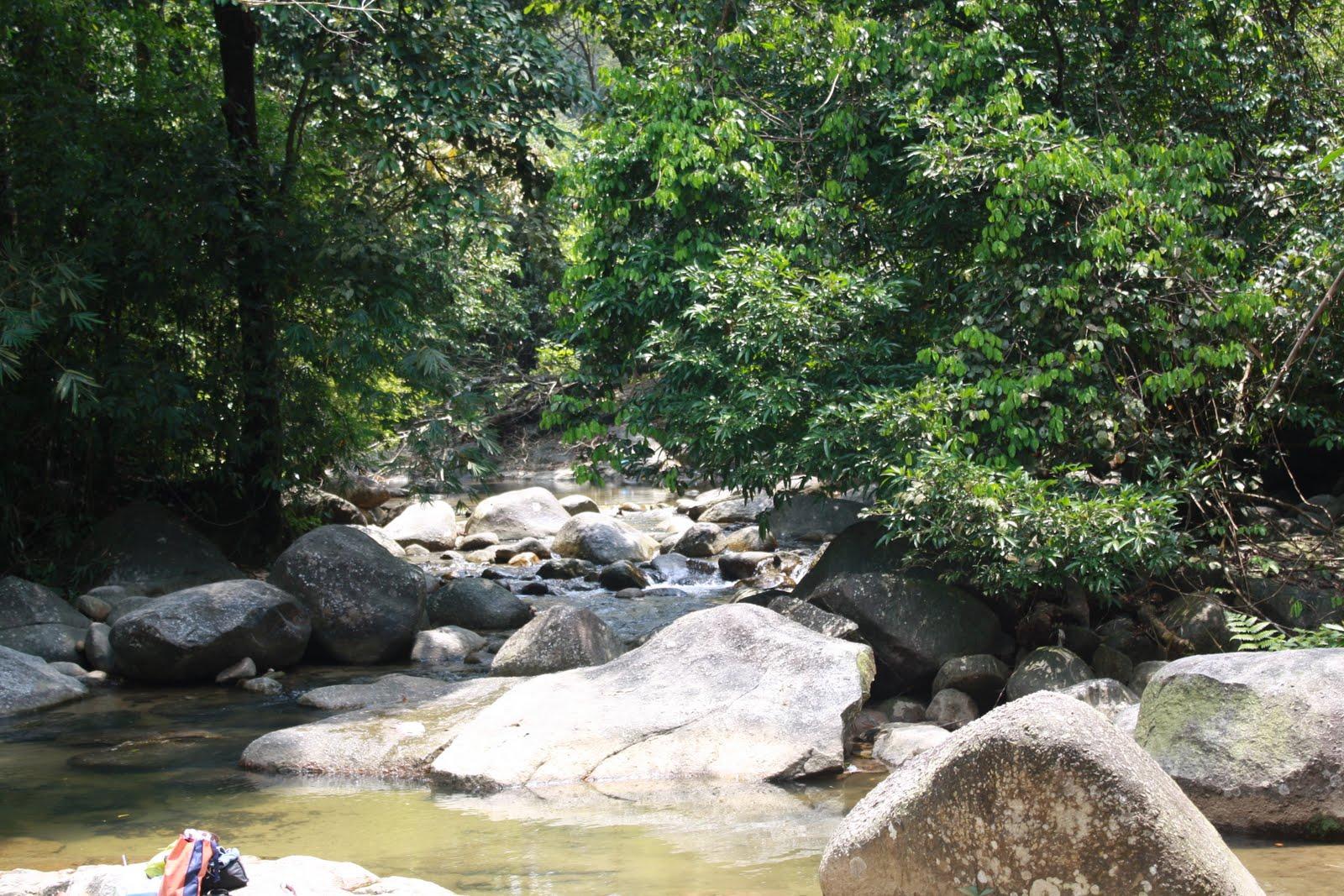 Burmese Pool Taiping Pen Tastiq