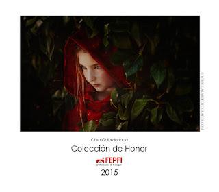 Obra Coleción de Honor 2015 fepfi, autor galart fotografos