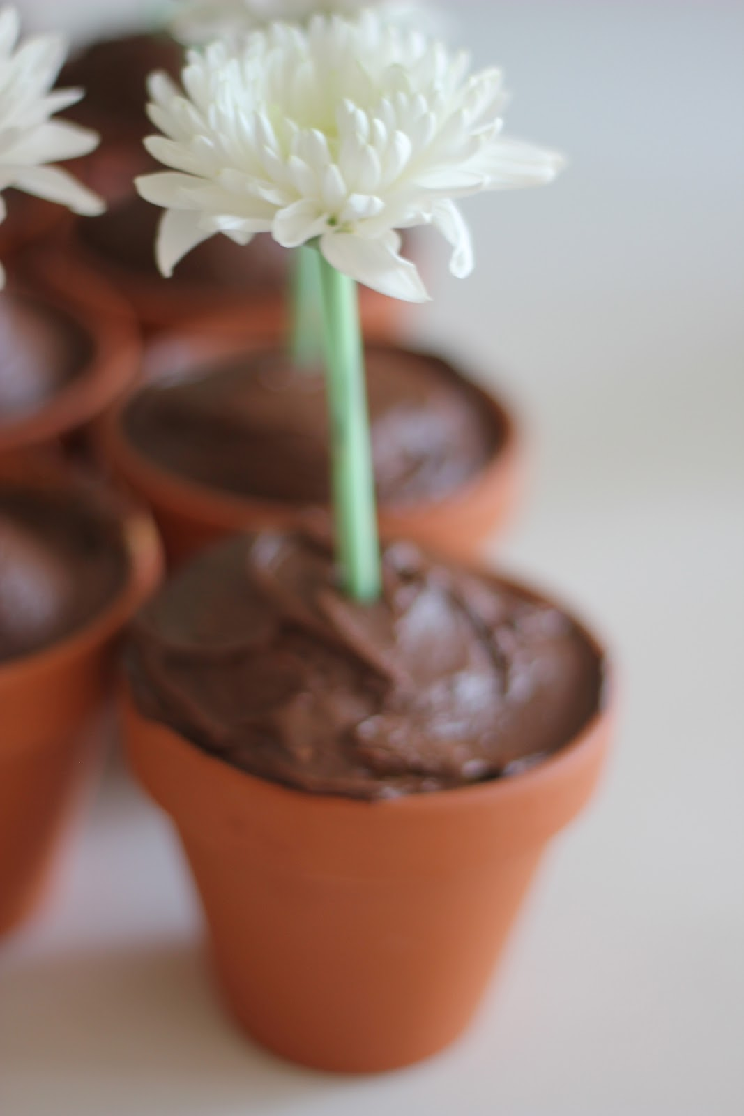 Easy Flower Pot Cupcakes - The Imagination Tree on garden trellis designs, stone gardens designs, box gardens designs, garden planters designs, flower pot designs, dish gardens designs, patio pot designs, flower garden designs, diy garden designs, rock gardens designs, pot people designs, garden gate designs, pinch pot designs, indoor garden designs, potted plant designs, container gardens designs, herb gardens designs, water garden designs, potted vegetable garden designs, mosaic pots designs,
