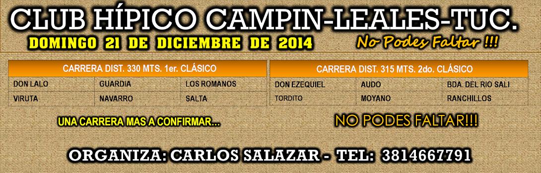 21-12-14-HIP.CAMPIN-TUC.PROG.