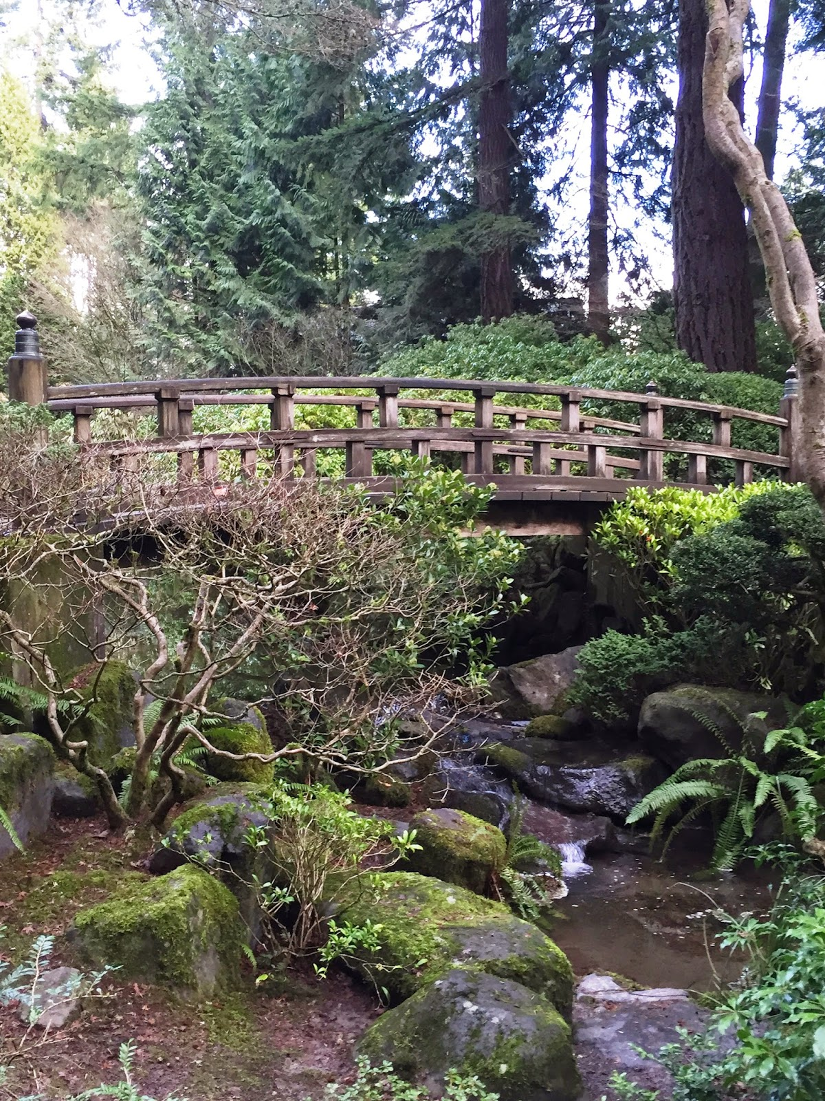 Japanese Bridge, Portland