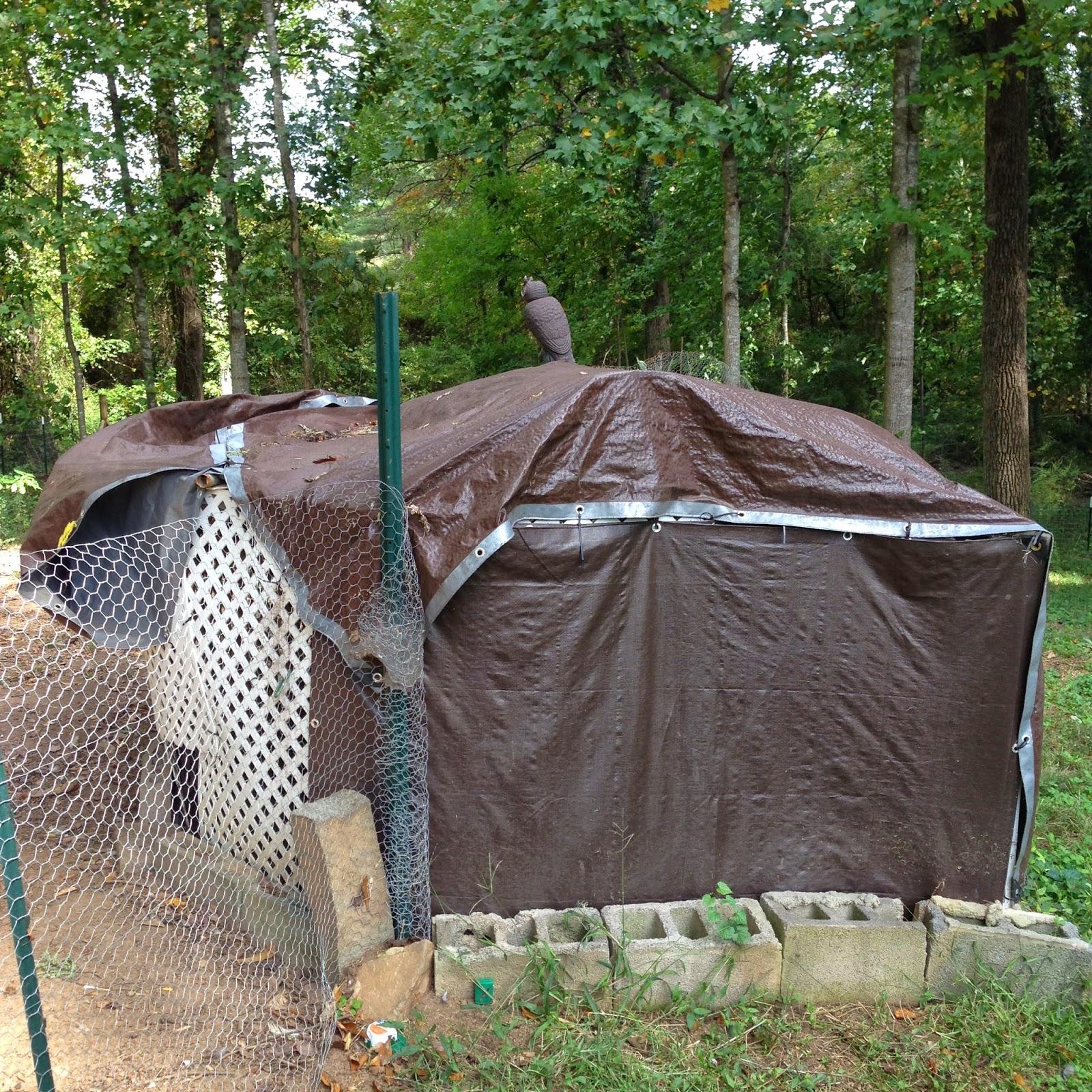 Josh Day's Chicken Coop 2014