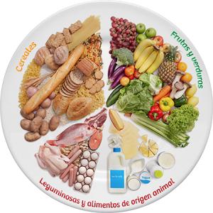 dieta saludable para quemar la grasa abdominal