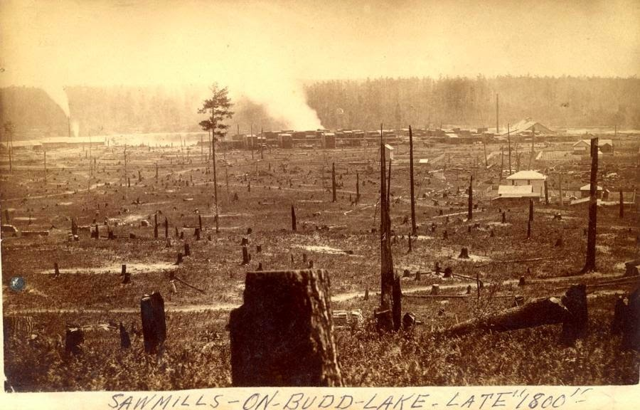 Climbing My Family Tree: Saw Mill on Budd Lake Michigan in the late 1880, about 35 miles north of Evart Michigan