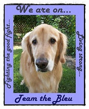 We are on Team Bleu
