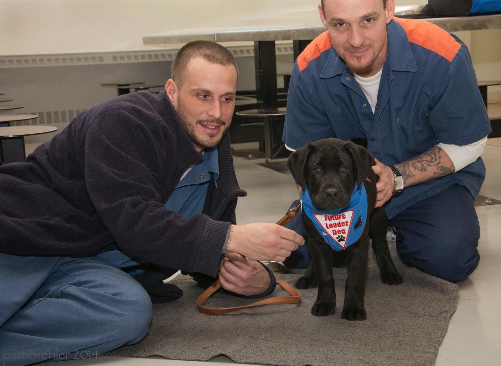 A small black lab is standing on a grey rug on a tile floor, looking intently at the camera. He is wearing a blue bandana with a white triangle with red letters that say Future Leader Dog and a black paw print. Two men are with the pup. One is on the left side and he is lying on his side, propped up on his left elbow. He is wearing blue pants and shirt and a blue jacket. He is holding a brown leash in his left hand and is reaching toward the puppy with his right hand. He is looking at the puppy and smiling. The other man is kneeling behind the puppy on the right and is holding the puppy's back haunches with his hands. He is wearing the blue prison pants and shirt iwth an orange stripe on the sholders. He is looking at the camera and smiling.