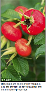 http://www.dailymail.co.uk/health/article-2087820/Daily-dose-rosehip-extract-help-cut-heart-disease-lower-blood-pressure-reduce-cholesterol.html#axzz2Jk52yG19