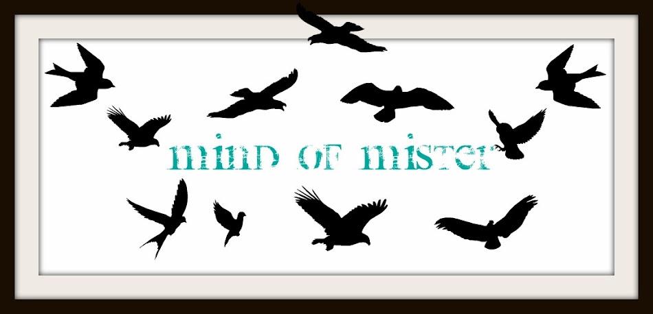 Mind of Mister