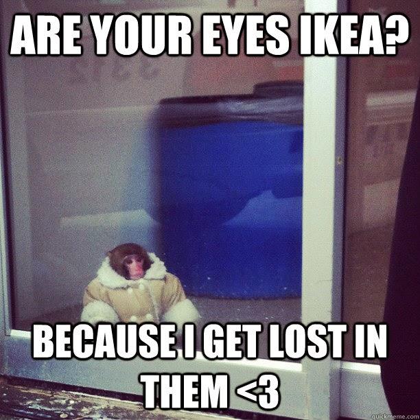 Lost in Ikea Meme