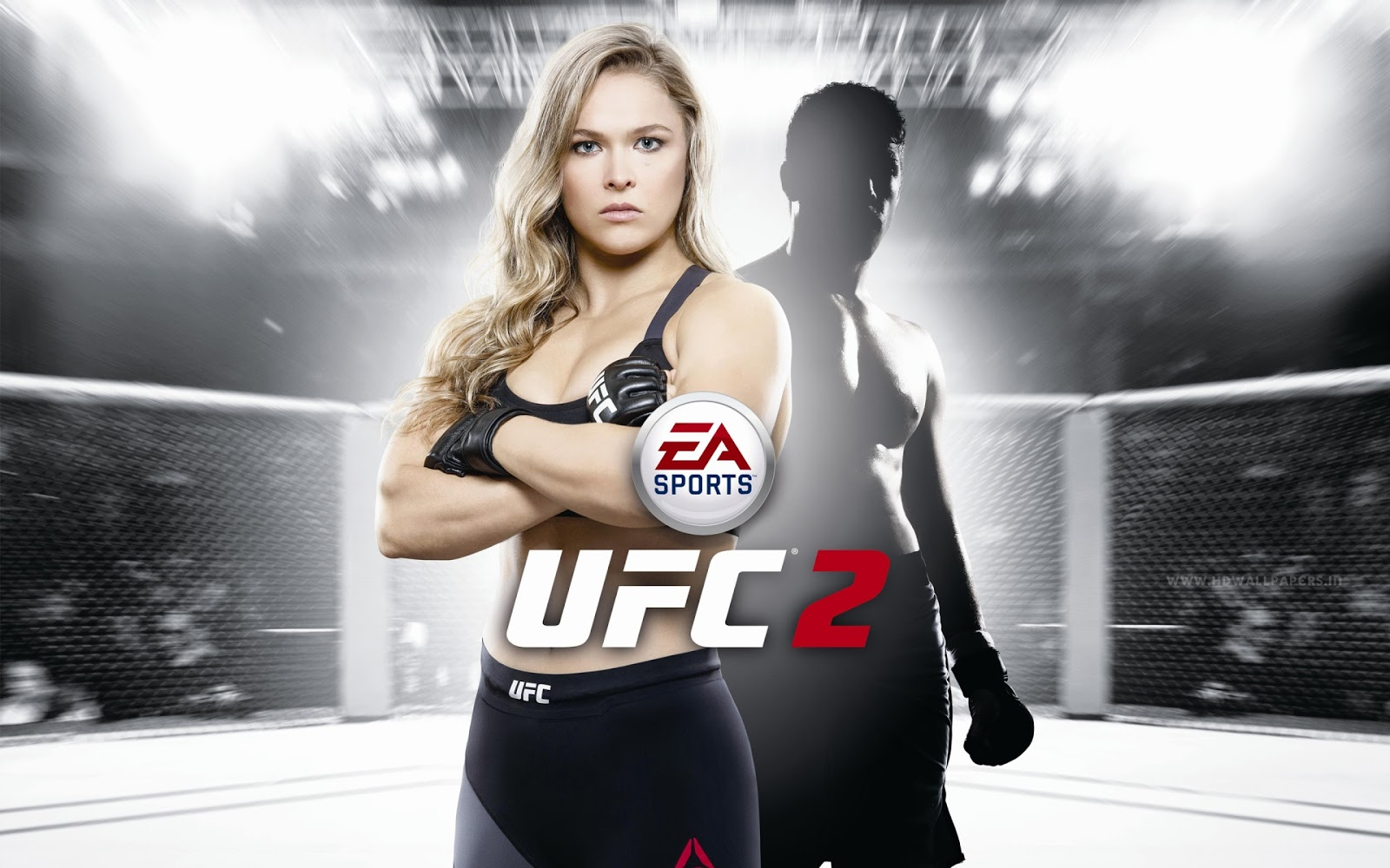 EA Sports UFC HD Wallpaper for Desktop