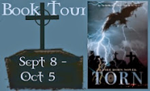 Torn Blog Tour