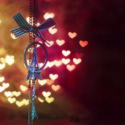 amoroso camino