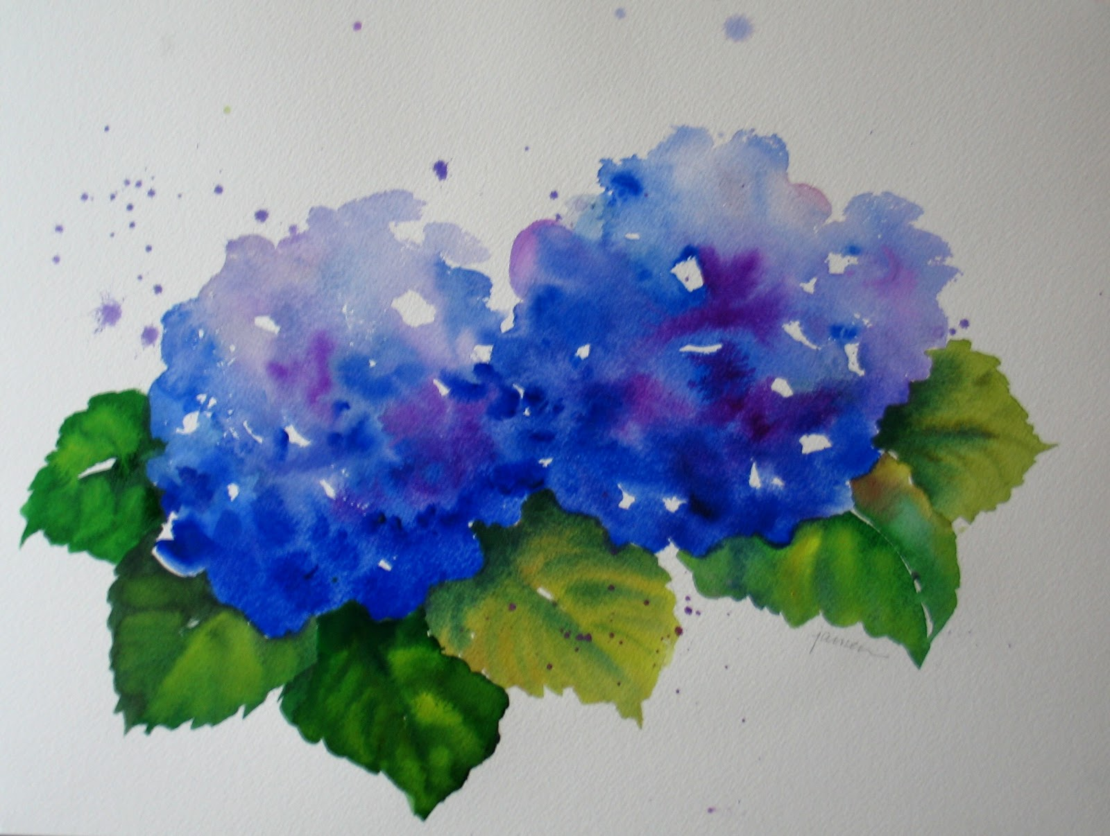 Nel s everyday painting hydrangea watercolors sold
