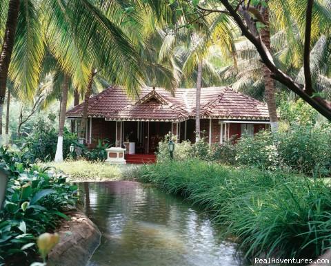 Famous Resorts of Ayurveda in Kerala