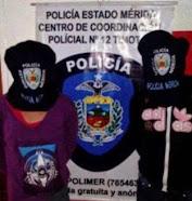 Comisión Policial aprehendió dos ciudadanos por robo y lesiones en la plaza Bolívar de Timotes