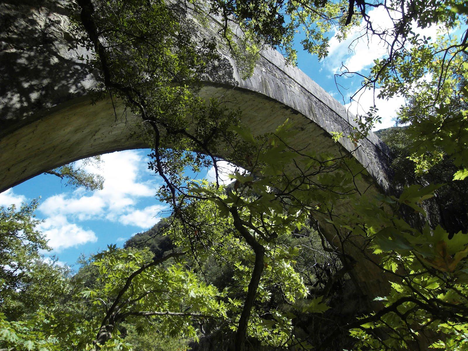 """Γεφύρι στη θέση """"Δομοκός"""" ή Βιδιακίτικο γεφύρι στον Ερύμανθο. Ιστορία-πρωτομάστορες-χτίσιμο"""