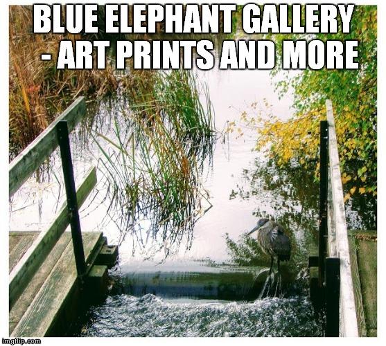 Blue Elephant Gallery ~ Capitalism is Beautiful