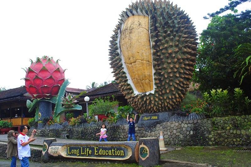 Warso-Farm-Bogor