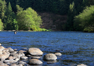 Spey rod fly fisher in a large river, rocks in the foreground and green trees in the background